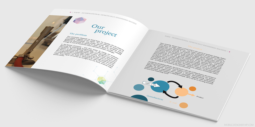 Science brochure design 8-9
